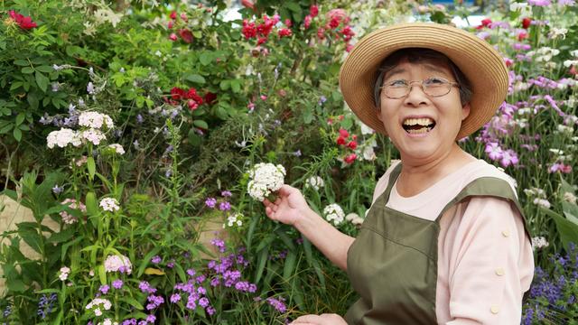 65歳歳以上の方の傷害保険家庭園芸