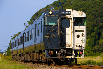 鉄ちゃんと鉄子の保険(鉄道ファンの保険)